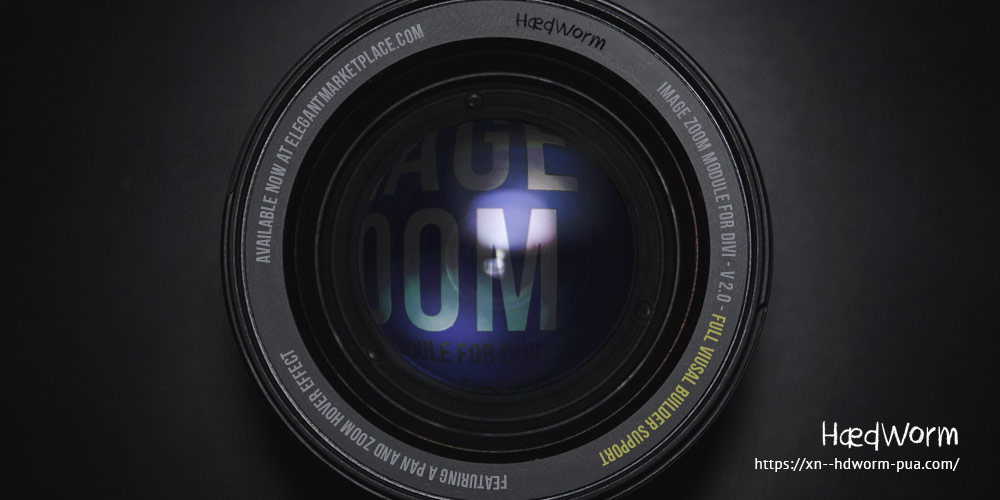 Image Zoom Custom Divi Module Version 2.0