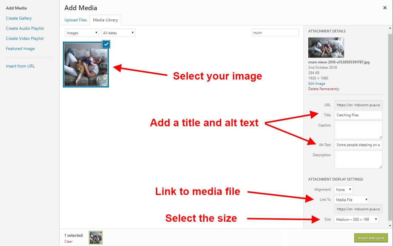 WordPress Add Media box
